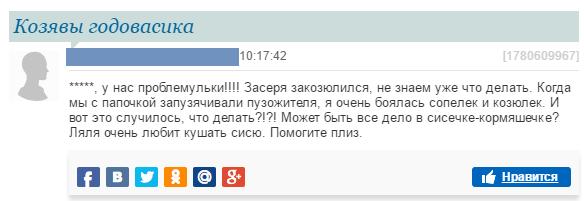 абсурд на форумах