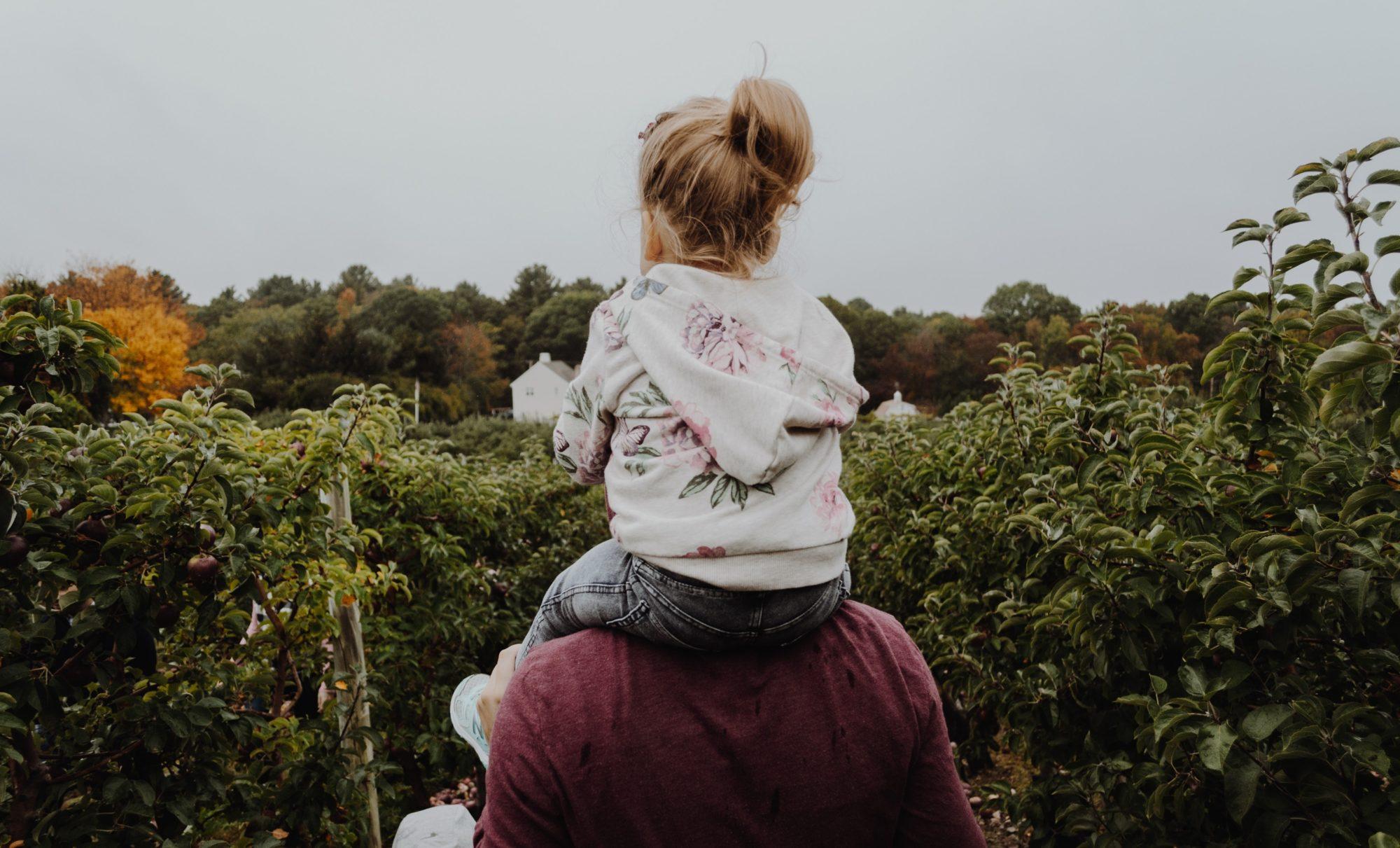 8 методик воспитания детей. Обзор