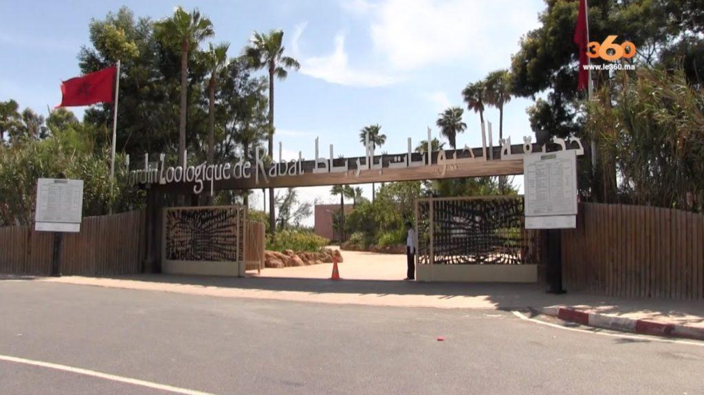 Зоопарк Jardin zoologique national de Rabat