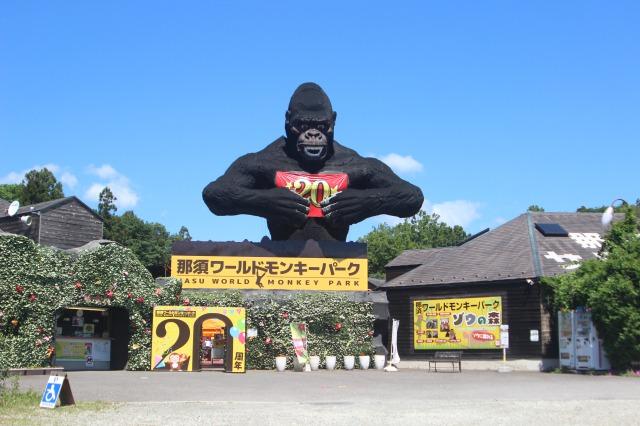 Парк с обезьянами